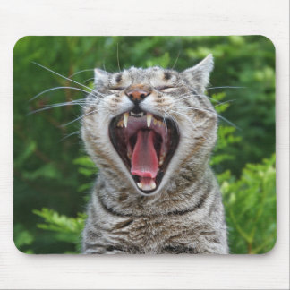 Portrait cat when yawning mouse pad