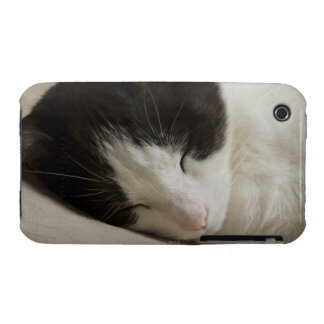Portrait detail of a domestic cat sleeping iPhone 3 Case-Mate case