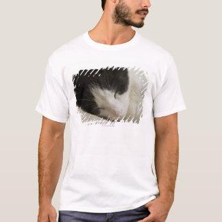 Portrait detail of a domestic cat sleeping T-Shirt