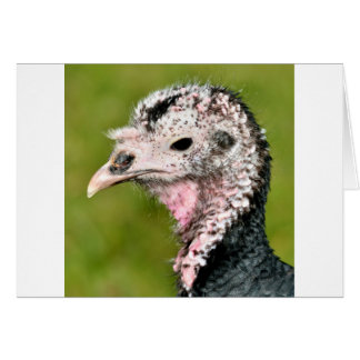 Portrait female turkeyg card
