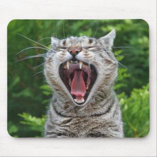 Portrait gato con la bostezada tapete de raton