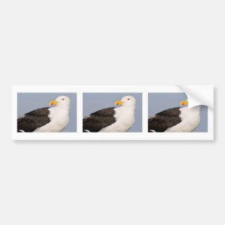 Portrait Great Black-backed Gull Bumper Sticker