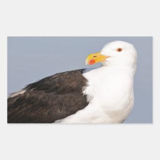 Portrait Great Black-backed Gull Rectangular Sticker