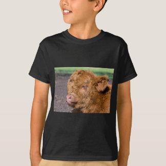 Portrait head newborn scottish highlander calf T-Shirt
