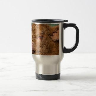 Portrait head newborn scottish highlander calf travel mug