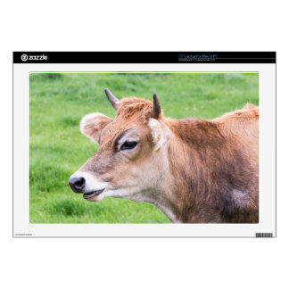 "Portrait head of horned brown cow 17"" laptop skins"