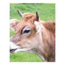 Portrait head of horned brown cow letterhead
