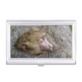 Portrait Of A Baby Olive Baboon (Papio Anubis) Case For Business Cards