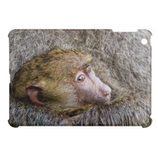 Portrait Of A Baby Olive Baboon (Papio Anubis) Case For The iPad Mini
