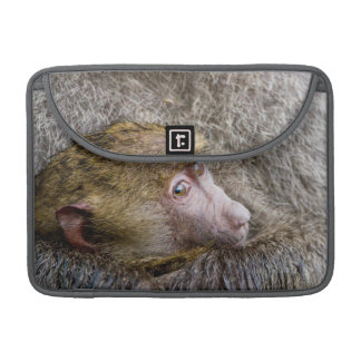 Portrait Of A Baby Olive Baboon (Papio Anubis) Sleeve For MacBook Pro