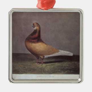 Portrait of a Beard Pigeon Metal Ornament