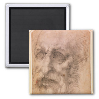 Portrait of a Bearded Man Magnet