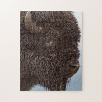 Portrait Of A Bison Bull In The Rain 2 Jigsaw Puzzle