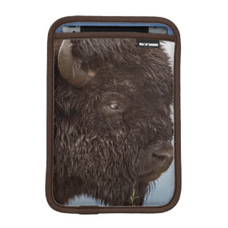 Portrait Of A Bison Bull In The Rain 2 Sleeve For iPad Mini