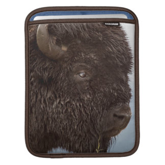 Portrait Of A Bison Bull In The Rain 2 Sleeve For iPads