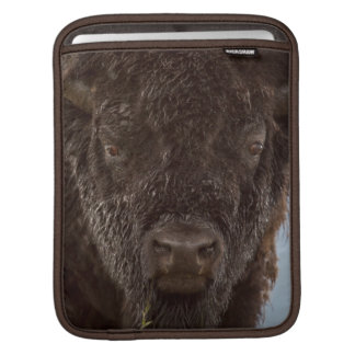 Portrait Of A Bison Bull In The Rain Sleeve For iPads