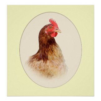 Portrait of a Brown Hen Print