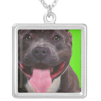 portrait of a bulldog silver plated necklace