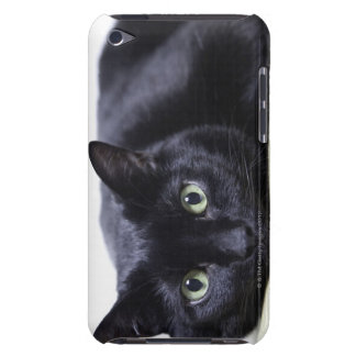 Portrait of a Cat Barely There iPod Covers