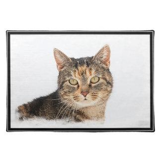 Portrait of a cat cloth placemat