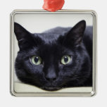 Portrait of a Cat Square Metal Christmas Ornament