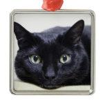 Portrait of a Cat Square Metal Christmas Ornament