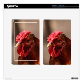 Portrait of a chicken on a farm. skins for kindle fire