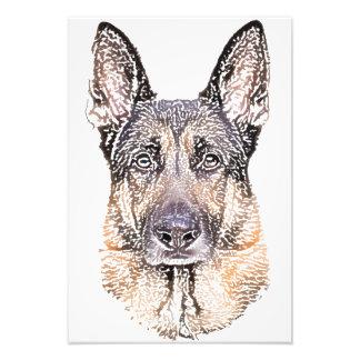 Portrait of a Dog German Shepherd Colored Sketch Photo Print