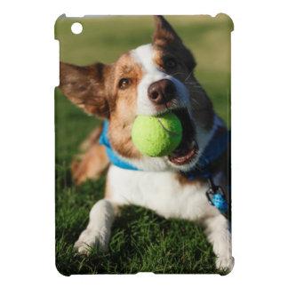 Portrait of a dog, Phoenix, Arizona iPad Mini Covers