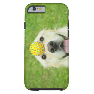 Portrait of a dog with a ball on its nose tough iPhone 6 case