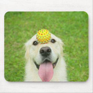 Portrait of a dog with a ball on its nose mouse pad