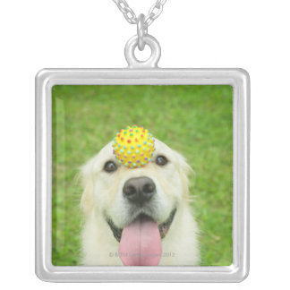 Portrait of a dog with a ball on its nose silver plated necklace