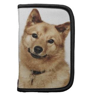 Portrait of a Finnish Spitz dog smiling Folio Planner