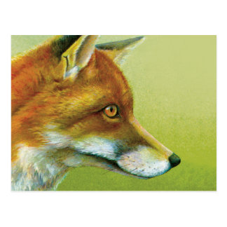 Portrait of a fox fine art postcard