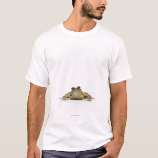 Portrait of a frog in a white studio T-Shirt