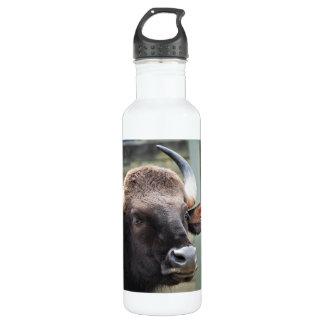 Portrait of a Gaur Stainless Steel Water Bottle