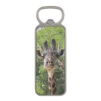 Portrait of A Giraffe Magnetic Bottle Opener