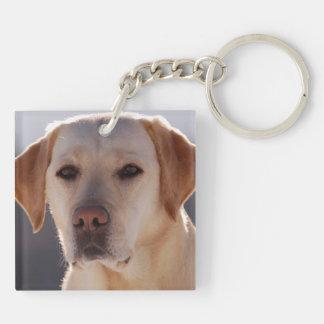 Portrait of A Golden Labrador Retriever Keychain