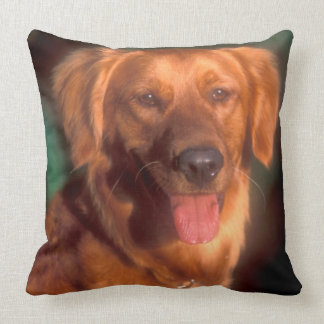 Portrait of a golden retriever throw pillow