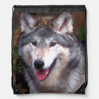 Portrait of a gray wolf drawstring backpack