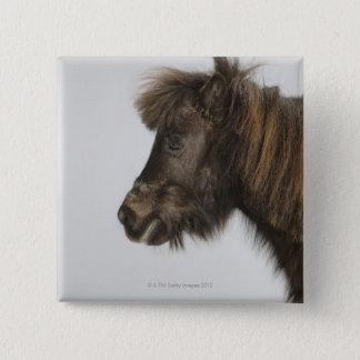 portrait of a horse button