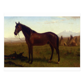 Portrait of a Horse by Albert Bierstadt Postcard