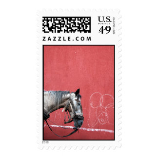 Portrait of a Horse on Red Background Postage