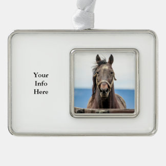 Portrait of a horse ornament