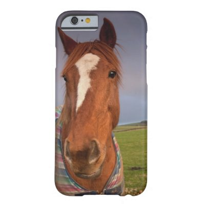 Portrait Of A Horse With A Rainbow In The Sky Barely There iPhone 6 Case