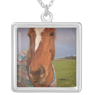 Portrait Of A Horse With A Rainbow In The Sky Silver Plated Necklace