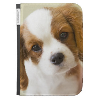 Portrait of a King Charles Spaniel puppy Kindle Cover