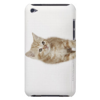Portrait of a kitten iPod touch Case-Mate case