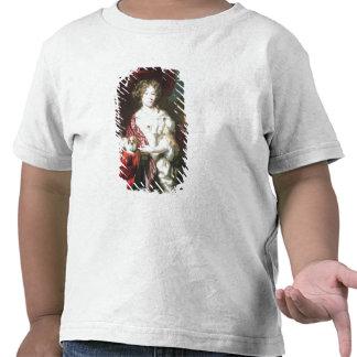 Portrait of a Lady, 1677 Shirts