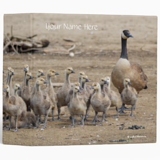 Portrait of a Large Canada Goose Family Binder